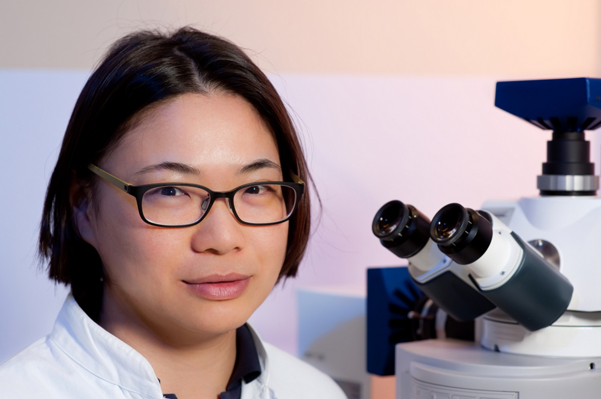 Ovarian Cancer Researchers Examine Ways to Deliver an Inhibitor Only to Stem Cells